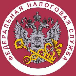 Налоговые инспекции, службы Елизово