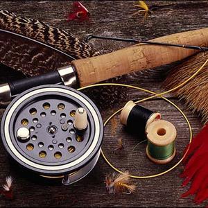 Охотничьи и рыболовные магазины Елизово
