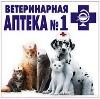 Ветеринарные аптеки в Елизово